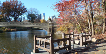 Bow Bridge Landing