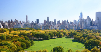 Sheep Meadow Aerial