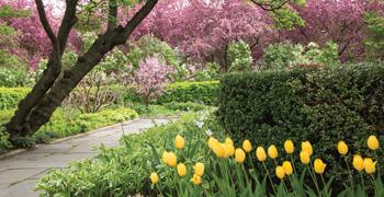 Spring: Conservatory Garden