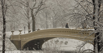 Winter: Bow Bridge