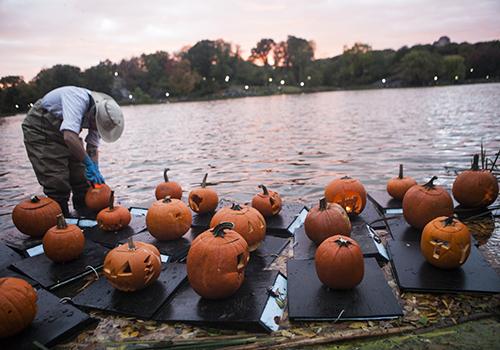pumpkin-flotillas.jpg