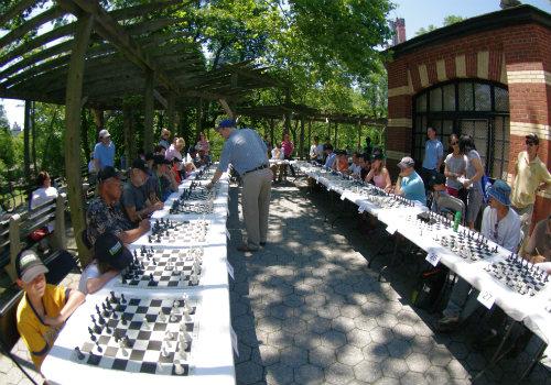 Chess Simual