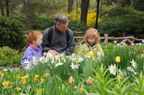 Discovery Walks for Families: Shakespeare Garden - The Official ...