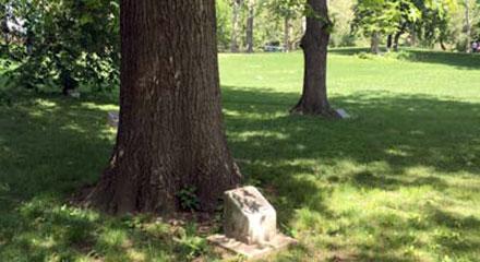 307-infantry-memorial-grove