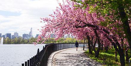 Central Park running track