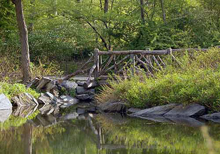 Pool Rustic Bridge