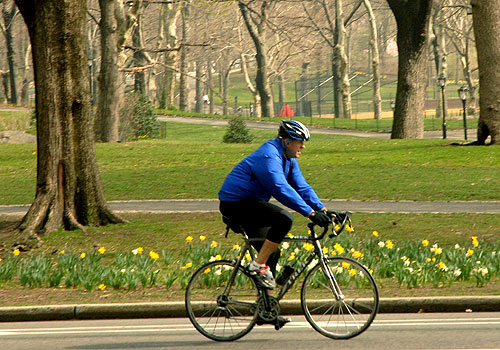 Bike Riding in Central Park