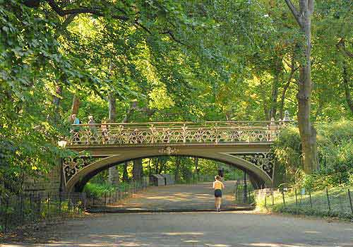 Bridge no 24 the official website of central park nyc for Things to do in central park today