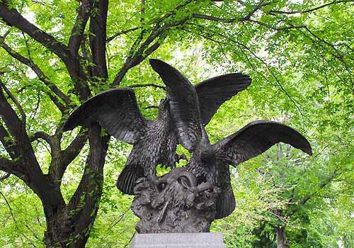 eagles prey