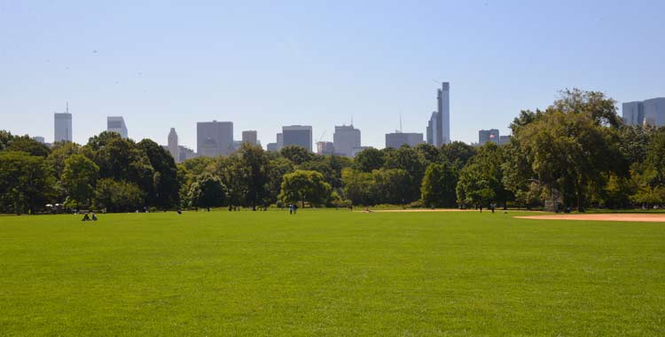 Great lawn the official website of central park nyc for Things to do in central park today