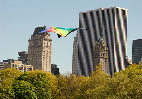 Kite Flying in Central Park