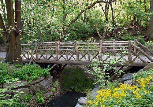 naturalists rustic bridge