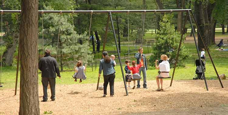 pinetum playground