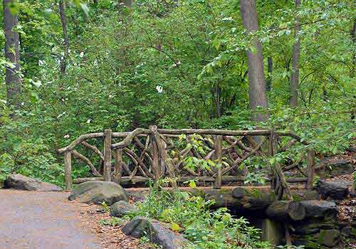 ravine rustic bridge