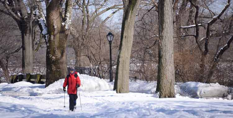 Skiing in Central Park