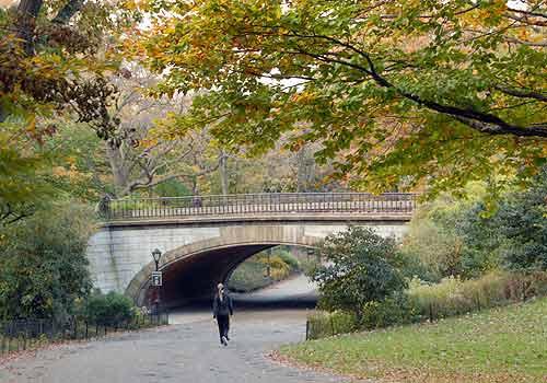 winterdale arch