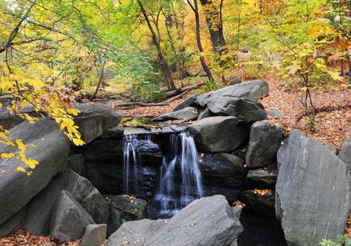 ravine in fall