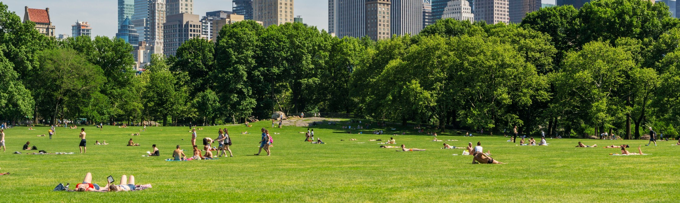 Park-goers enjoying the Sheep Meadow