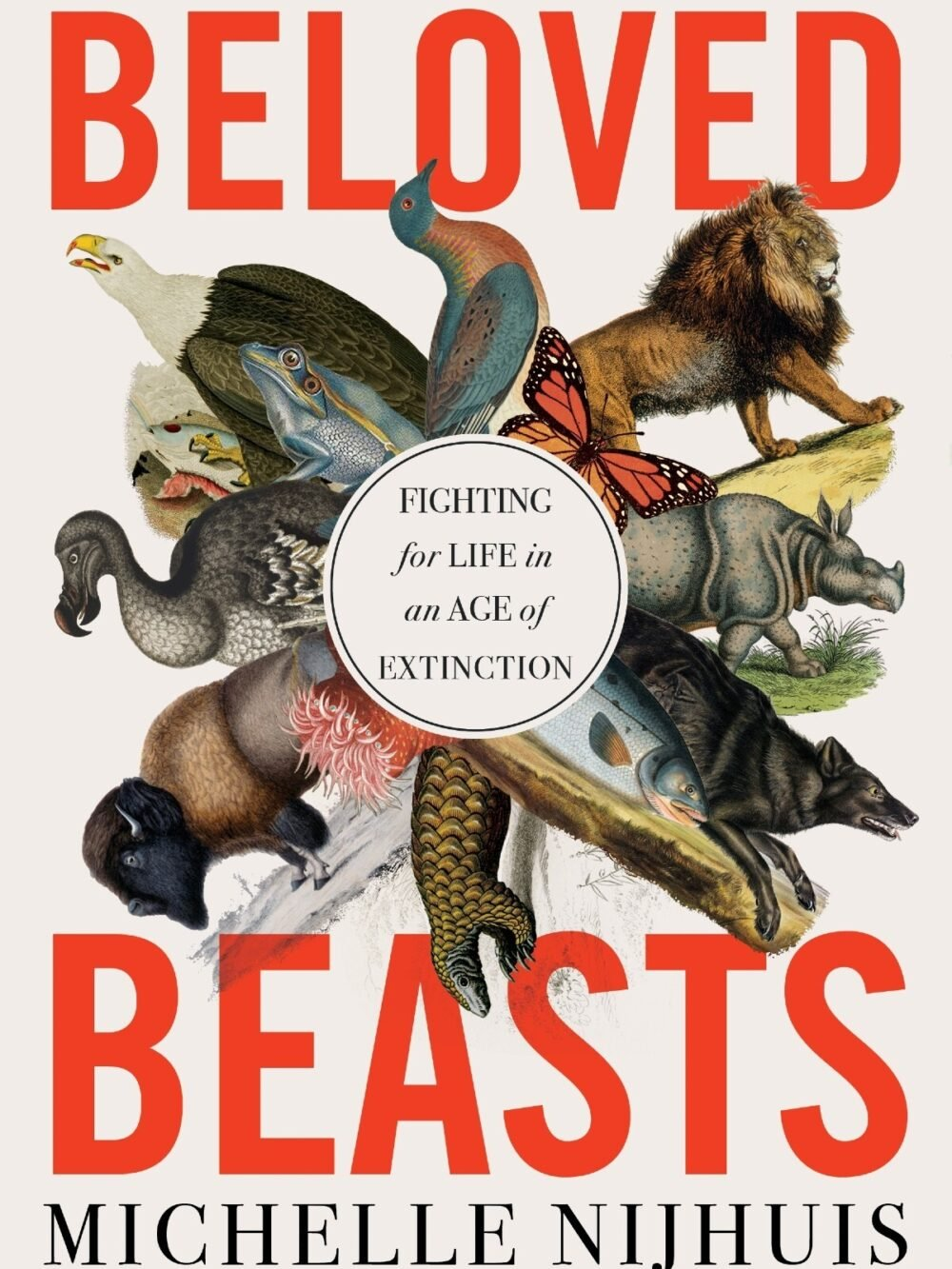 Book jacket showing a wide variety of threatened species, including a buffalo and a lion, among others.