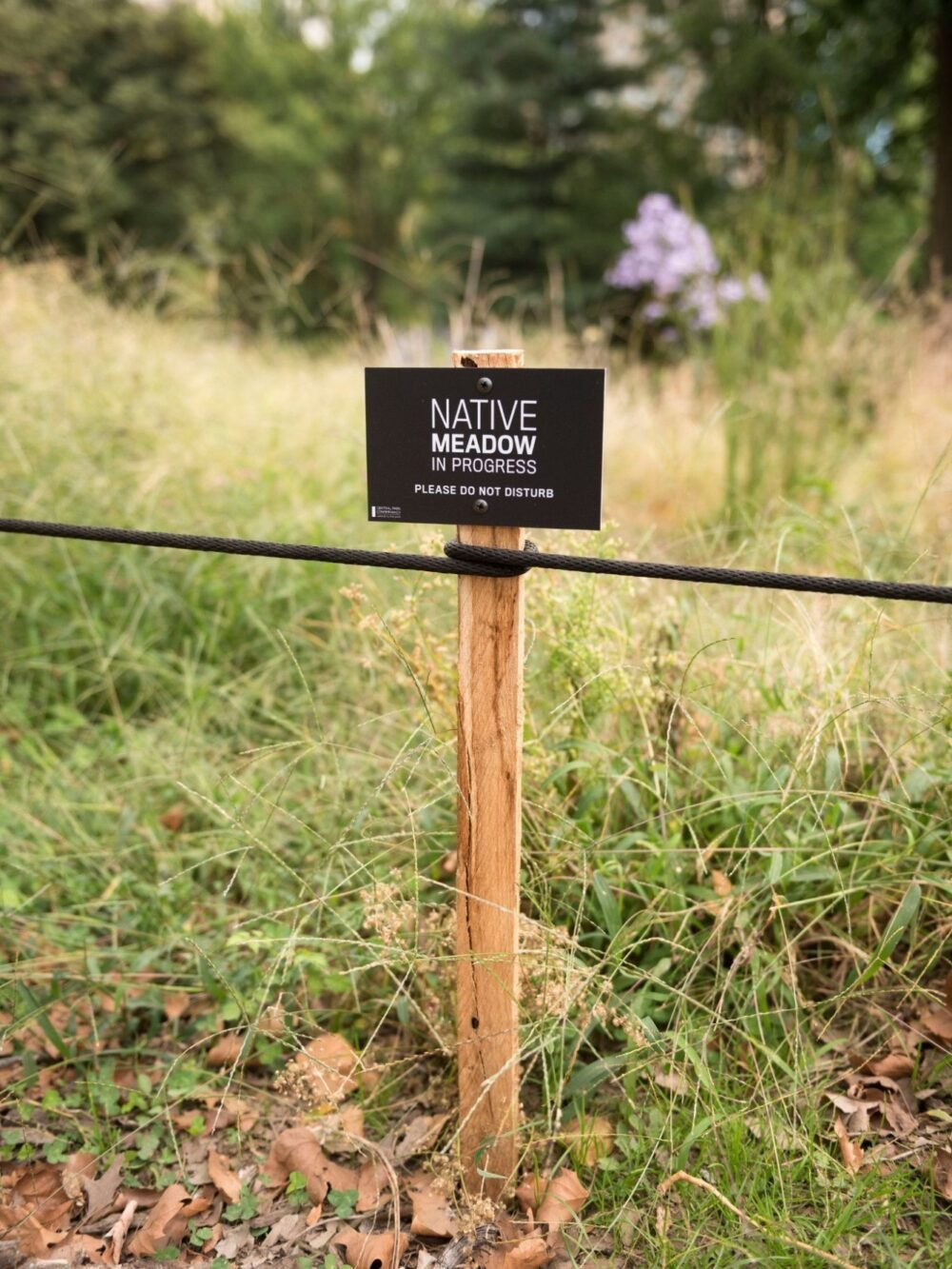 A black sign on a short wooden spike helps identify and protect delicate landscapes.