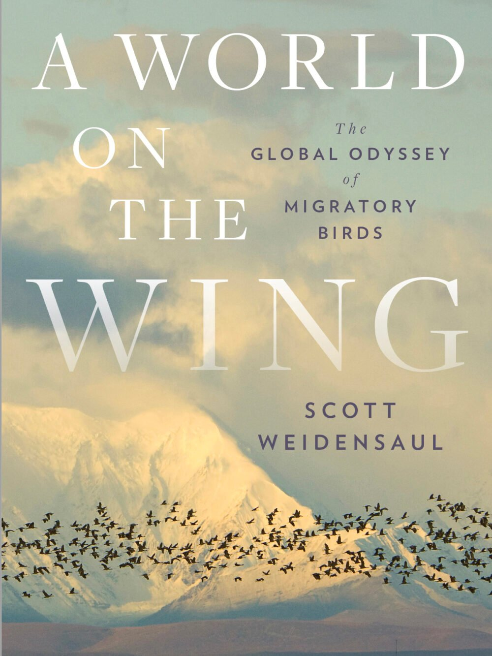 Book jacket depicting a flock of migratory birds against a backdrop of distant, snow-capped mountains.