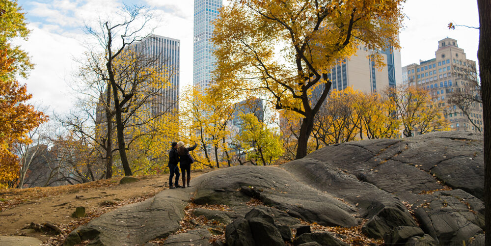 A couple enjoying the autumnal surroundings with the high rises of midtown providing the background