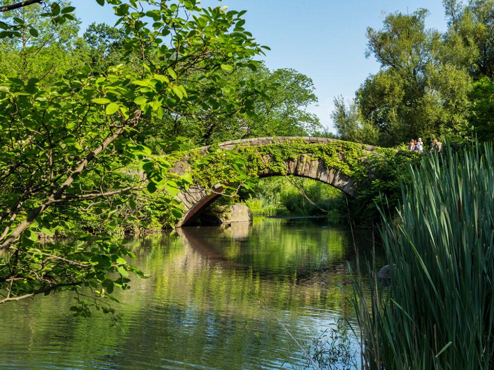 The bridge is reflected in the still water below