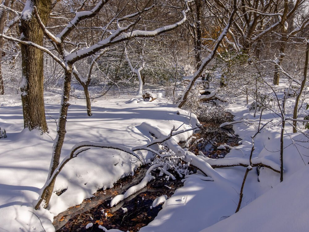 A snow-banked stream weaves through a winter landscape.