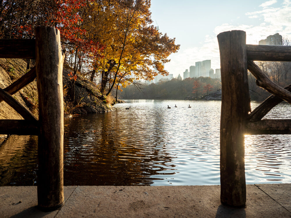 The Lake, photographed in Autumn