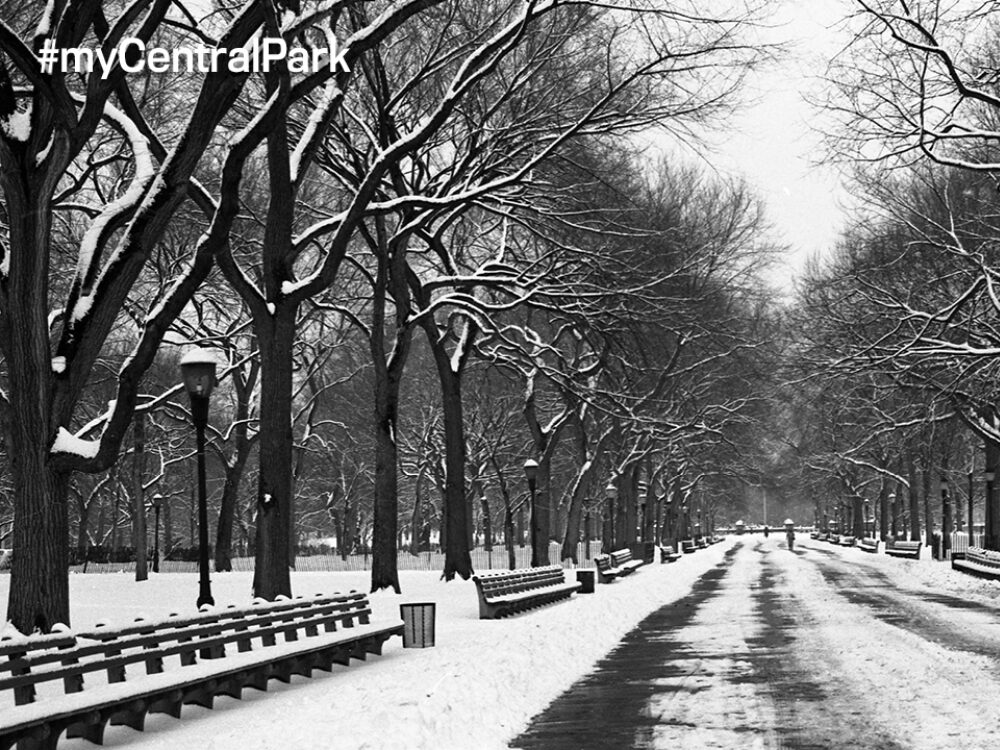 Black-and-white archival image looking down the length of the Mall in winter