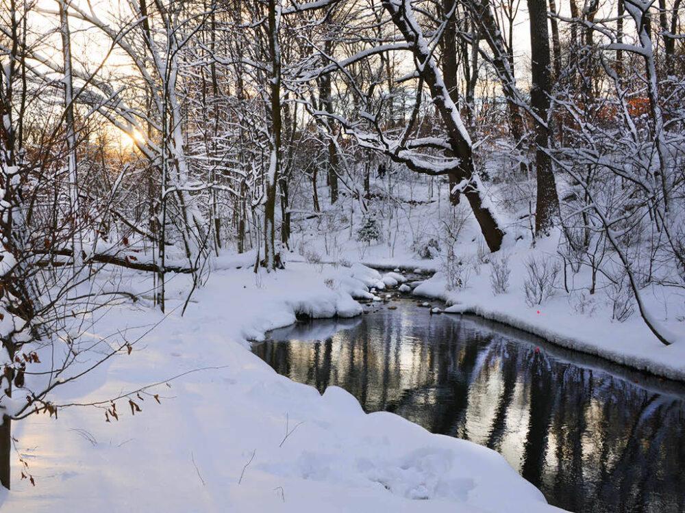 A stream runs through a snow-covered Ravine