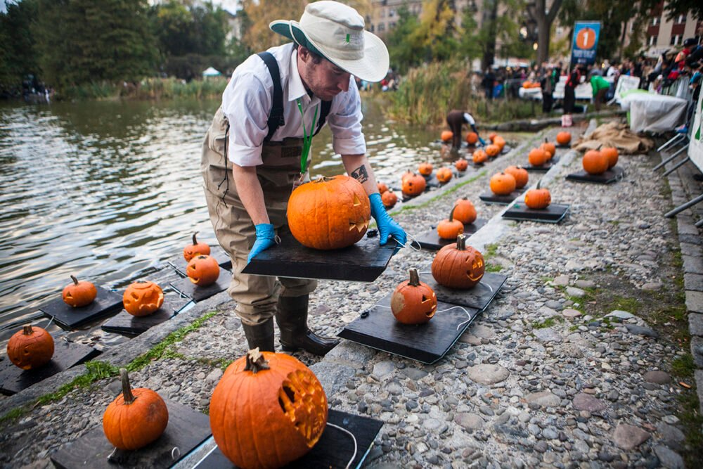 A Conservancy staff member prepares the flotilla, with a line of small black floating trays with pumpkins on them waiting to go