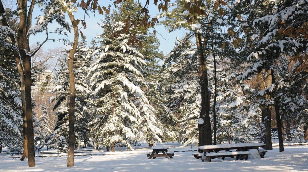 Blog wide 2x 20 Ways Winter 1