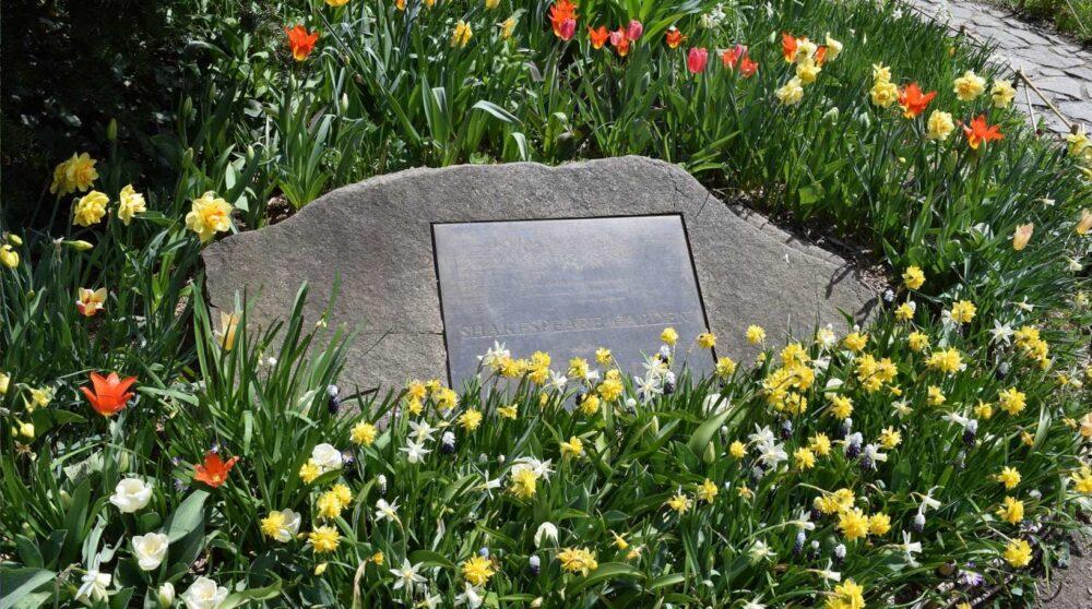 Blog wide 2x Secrets Shakespeare Garden 1