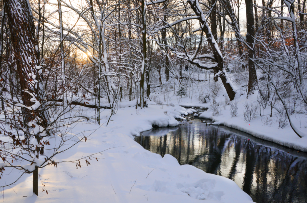 The stream running through the Ravine after a heavy snowfall