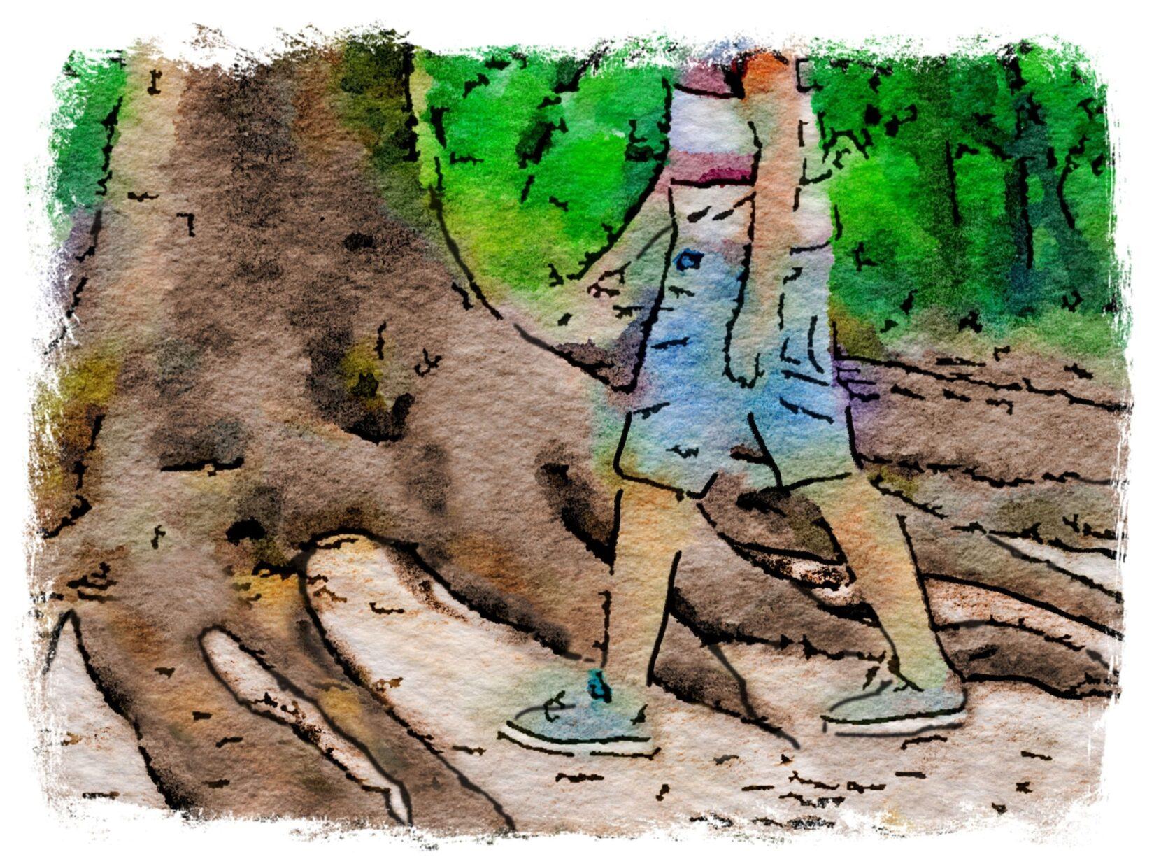 1b Walk Around Roots 2500x1875px