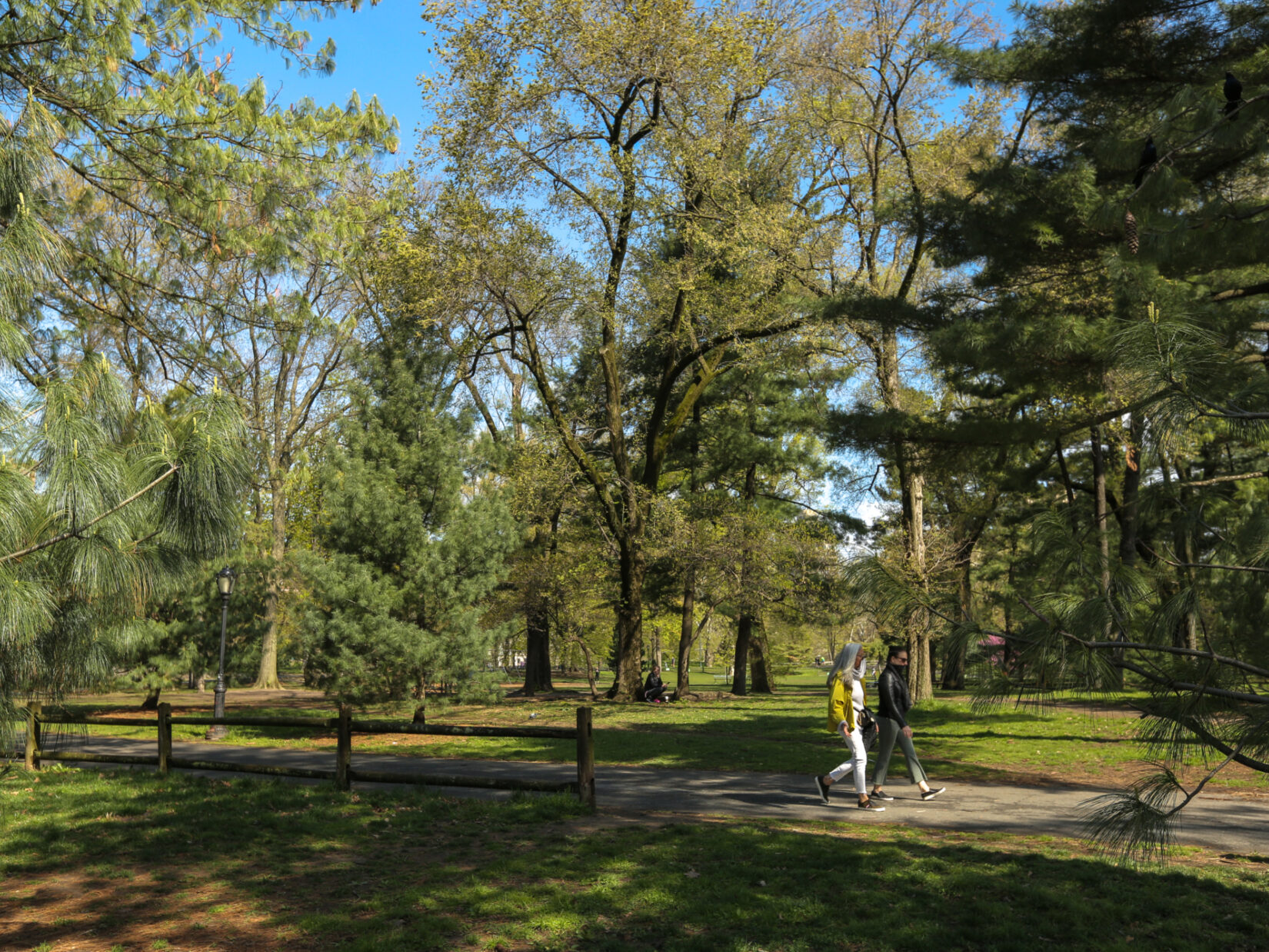 Two parkgoers stroll through the Arthur Rose Pinetum on a brisk, sunny day