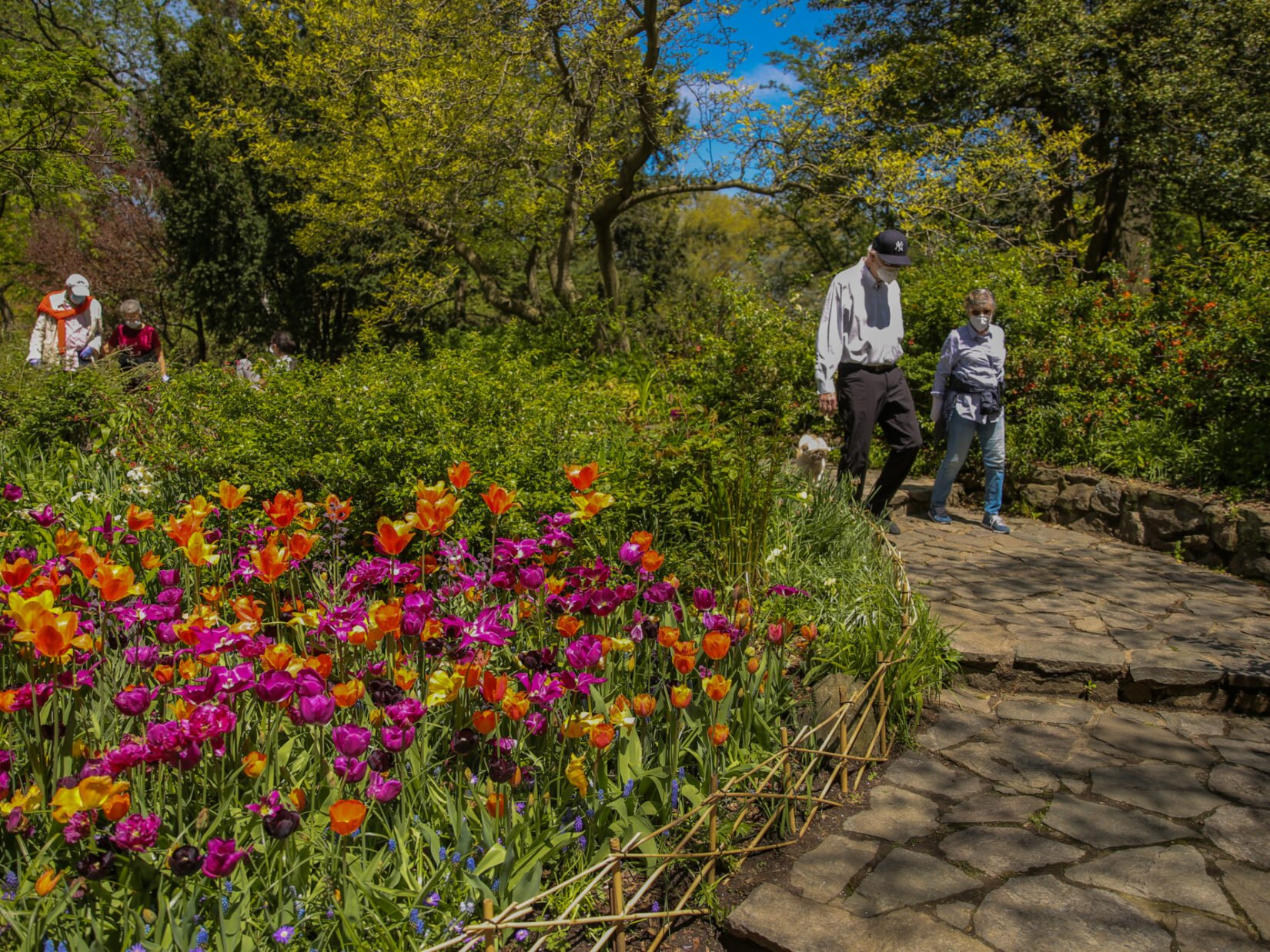 Masked visitors stroll the paths of the Shakespeare Garden