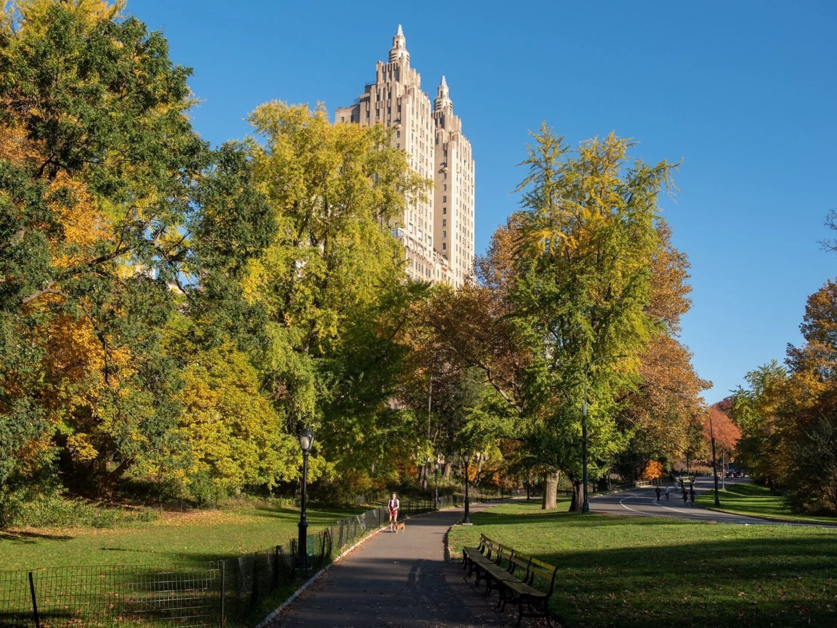 A view down the path through the landscape, with the buildings of Central Park West in the background, on a clear fall day.
