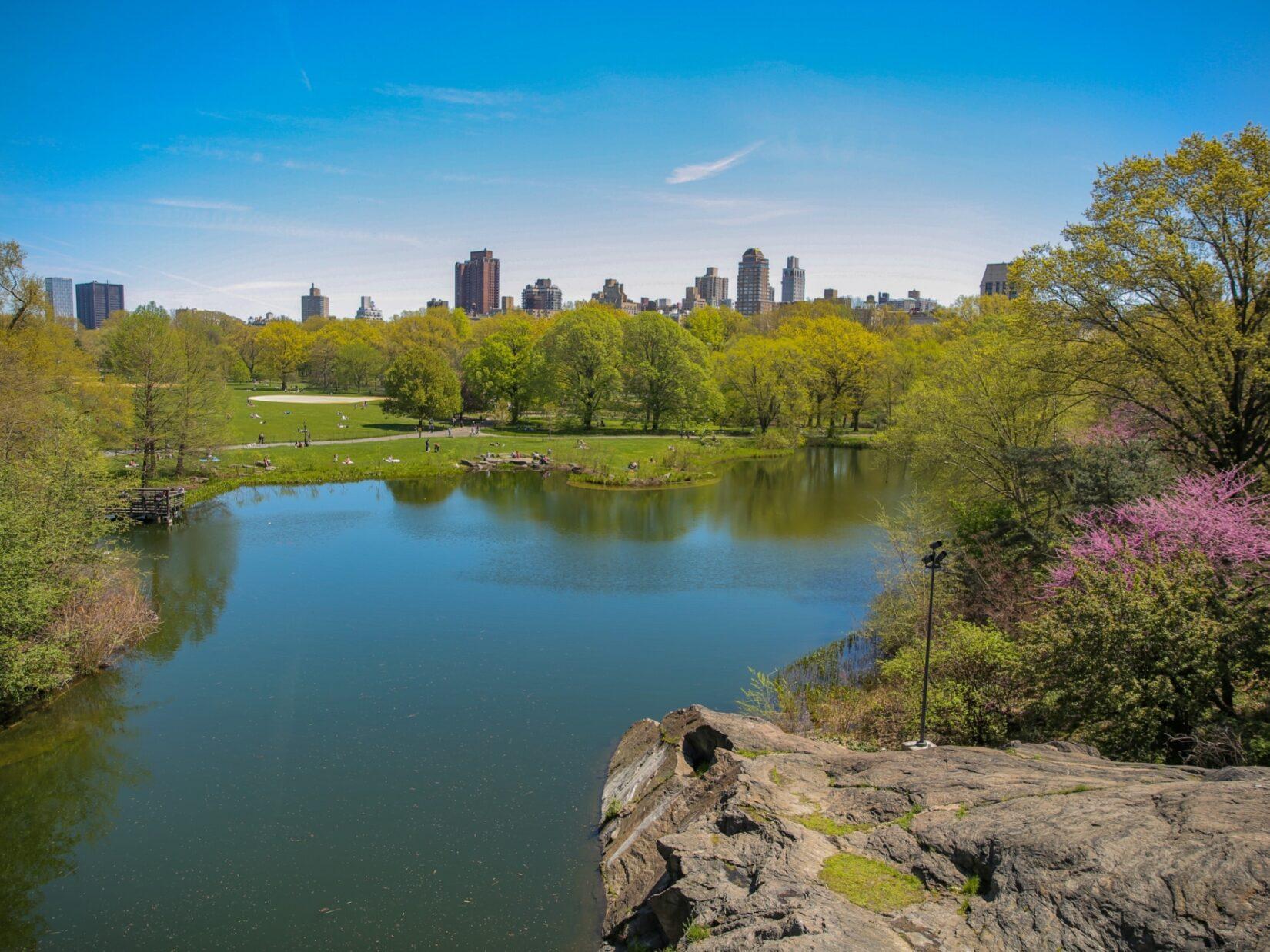 Looking across Turtle Pond toward the East Side of Manhattan