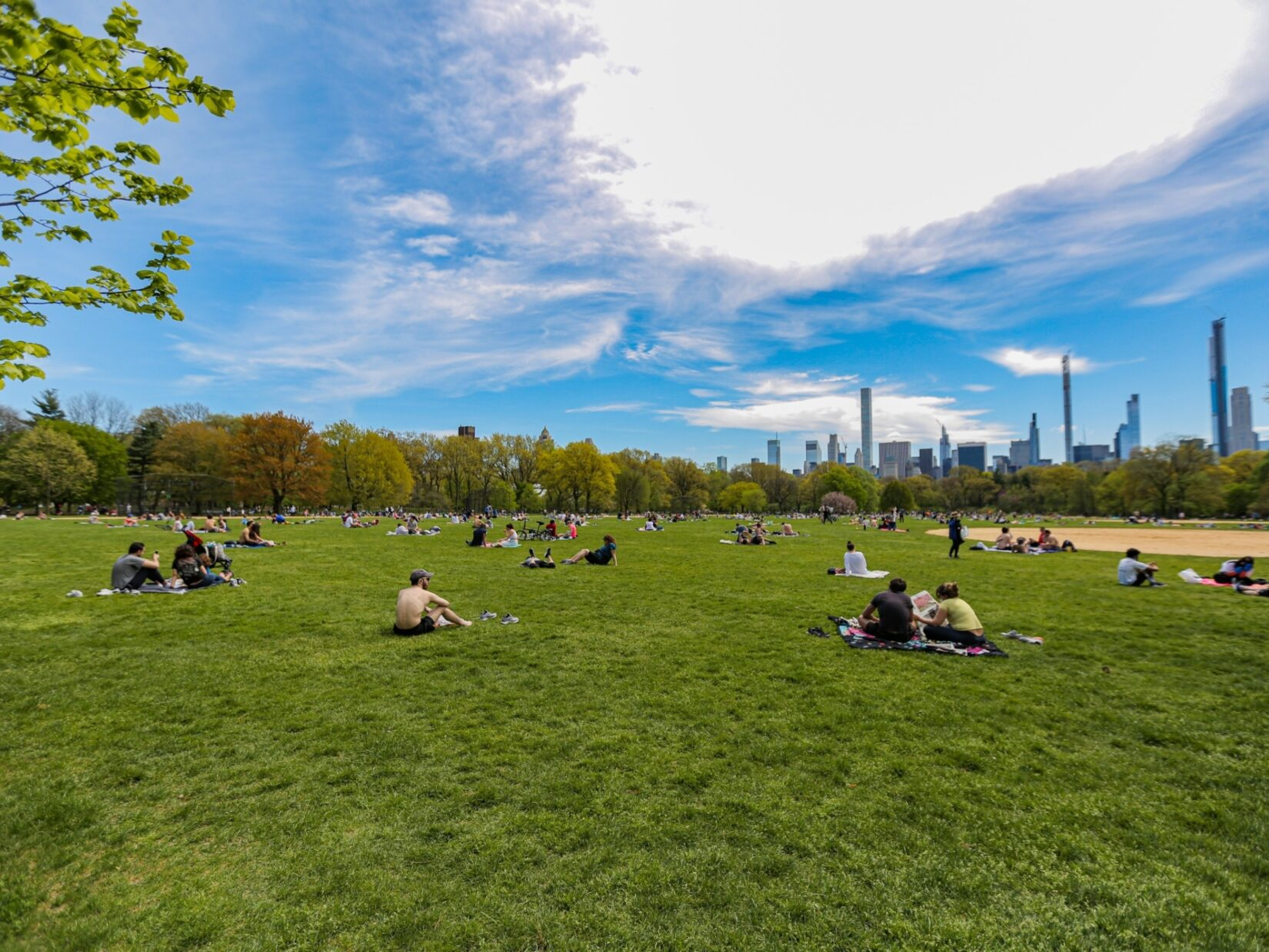 Socially-distanced parkgoers enjoying a summer day on the lawn