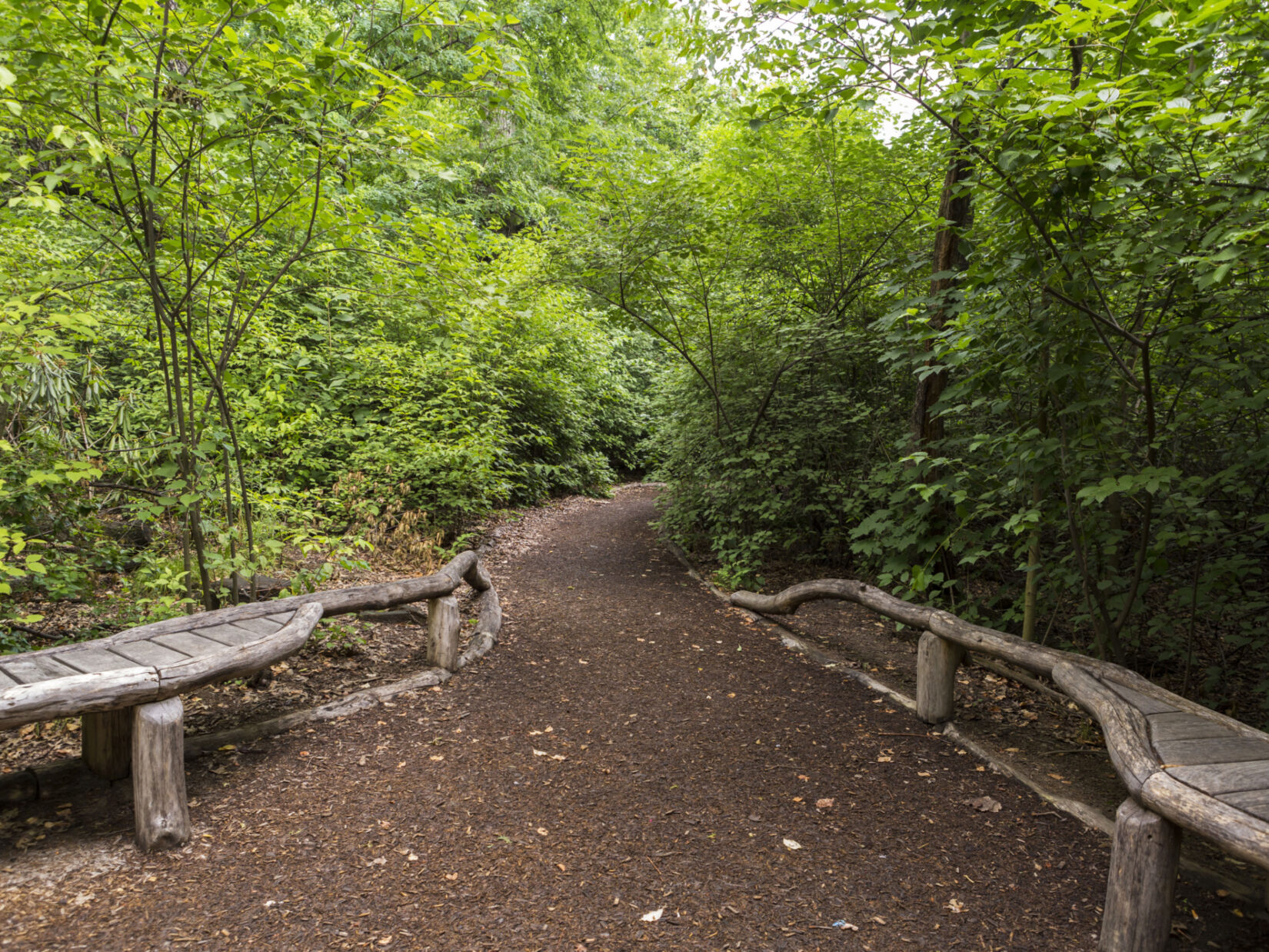 A path, lined with rustic features, winds into the Sanctuary