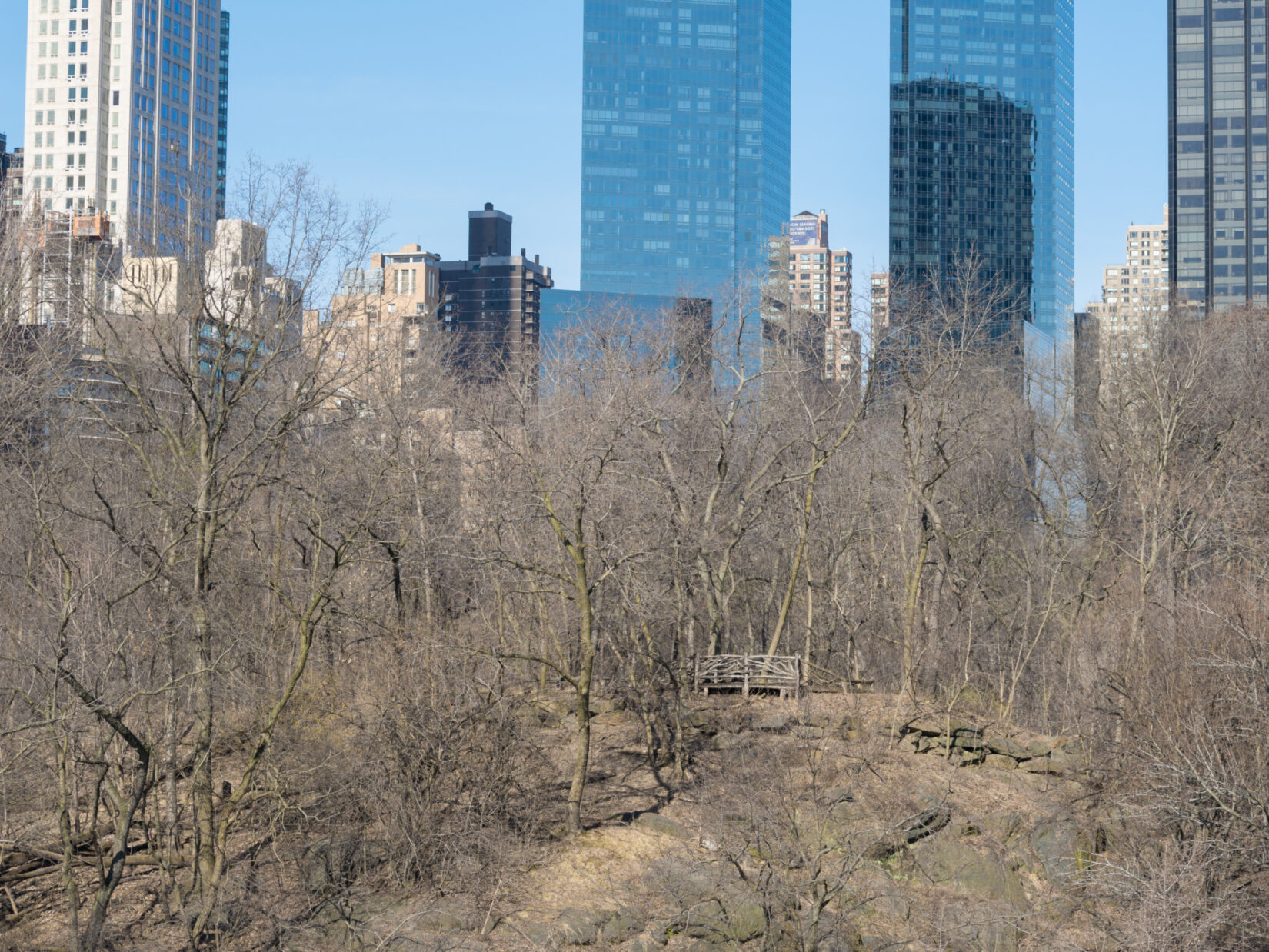 A rustic bench and the skyline of midtown Manhattan are seen through the bare branches of the Sanctuary in winter.