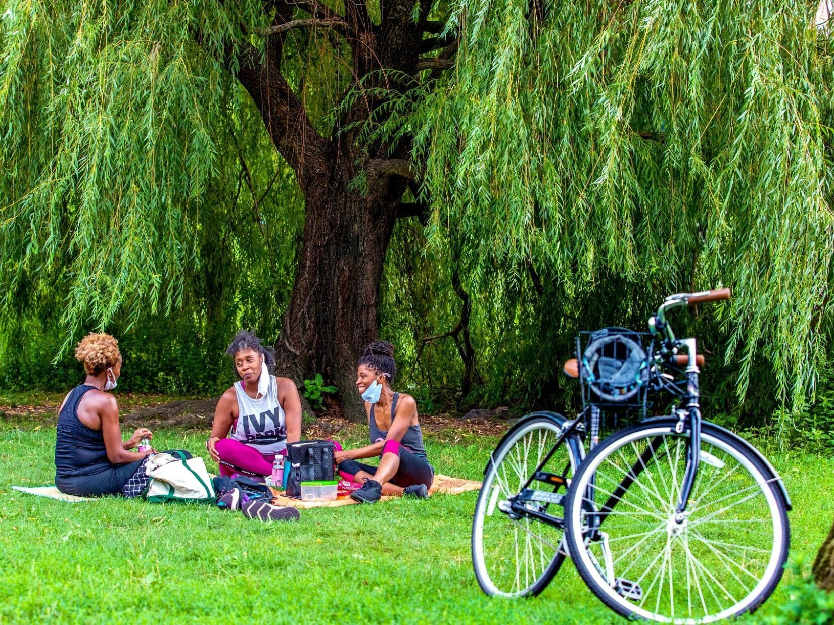 Three women enjoy a picnic beneath a tree, with a bicycle in the foreground.