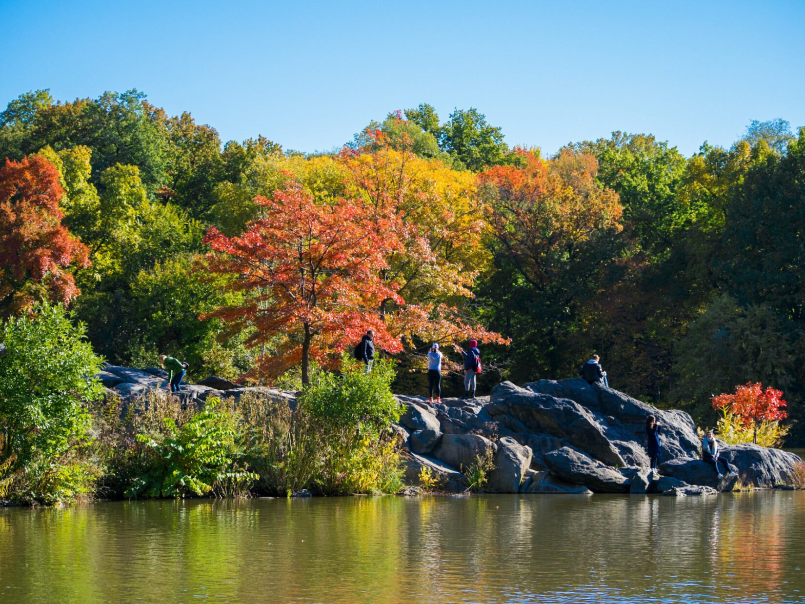 A fall view of Hernshead, overlooking the Lake, with Park visitors enjoying the bright foliage.