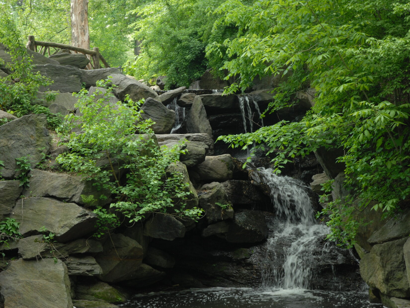 Rustic fencing can be seen at the top of this small waterfall in the Ravine