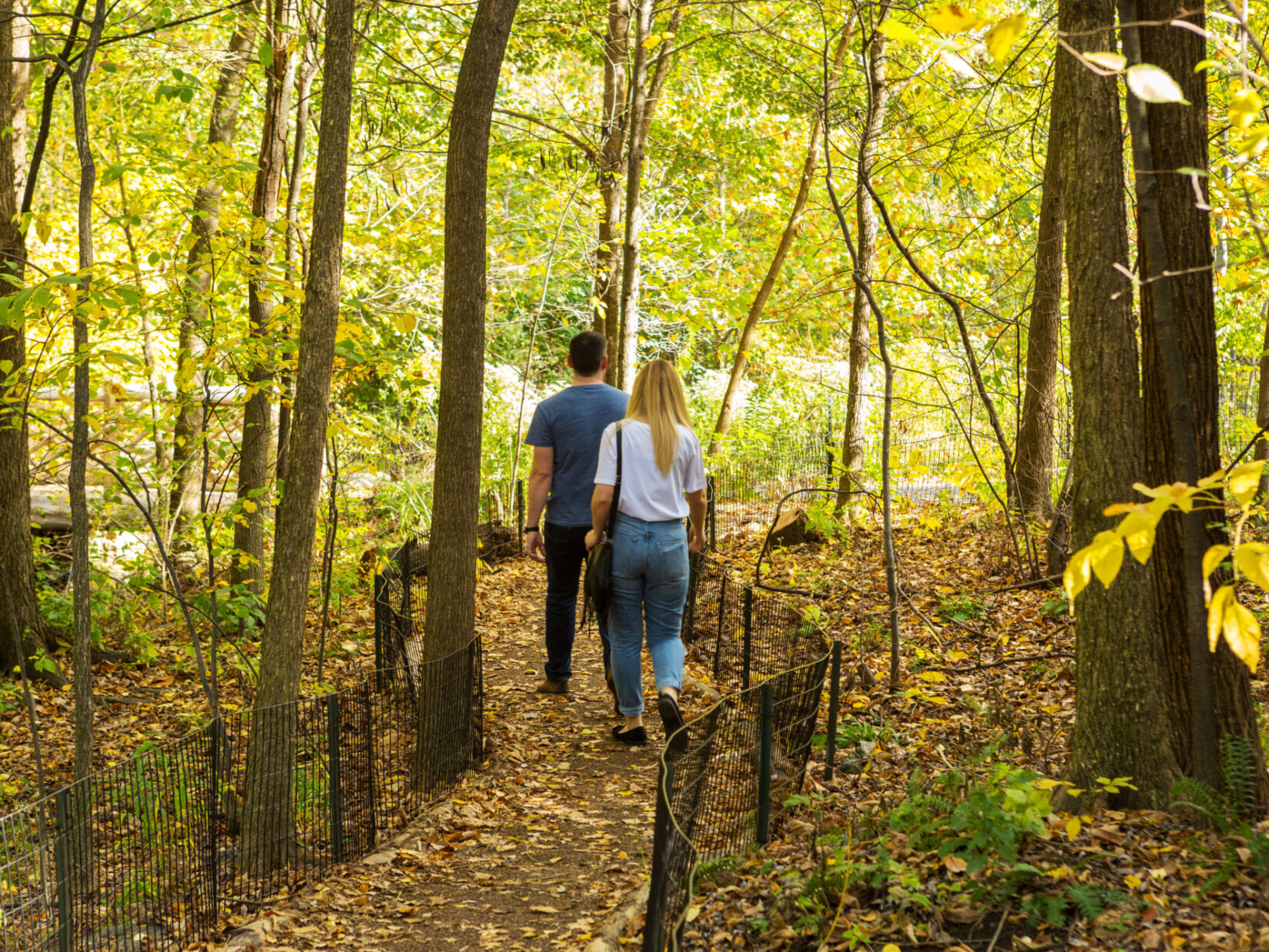 A couple walking down a leaf-strewn path in an autumnal North Woods