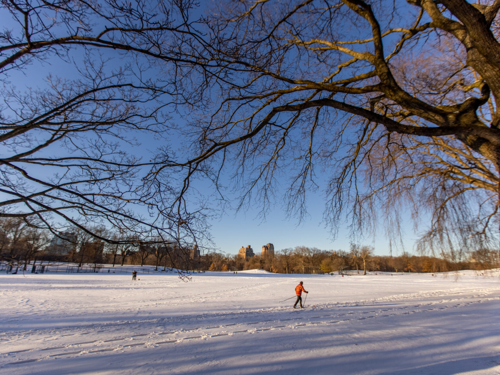A cross-country skier makes their way across a snowy North Meadow
