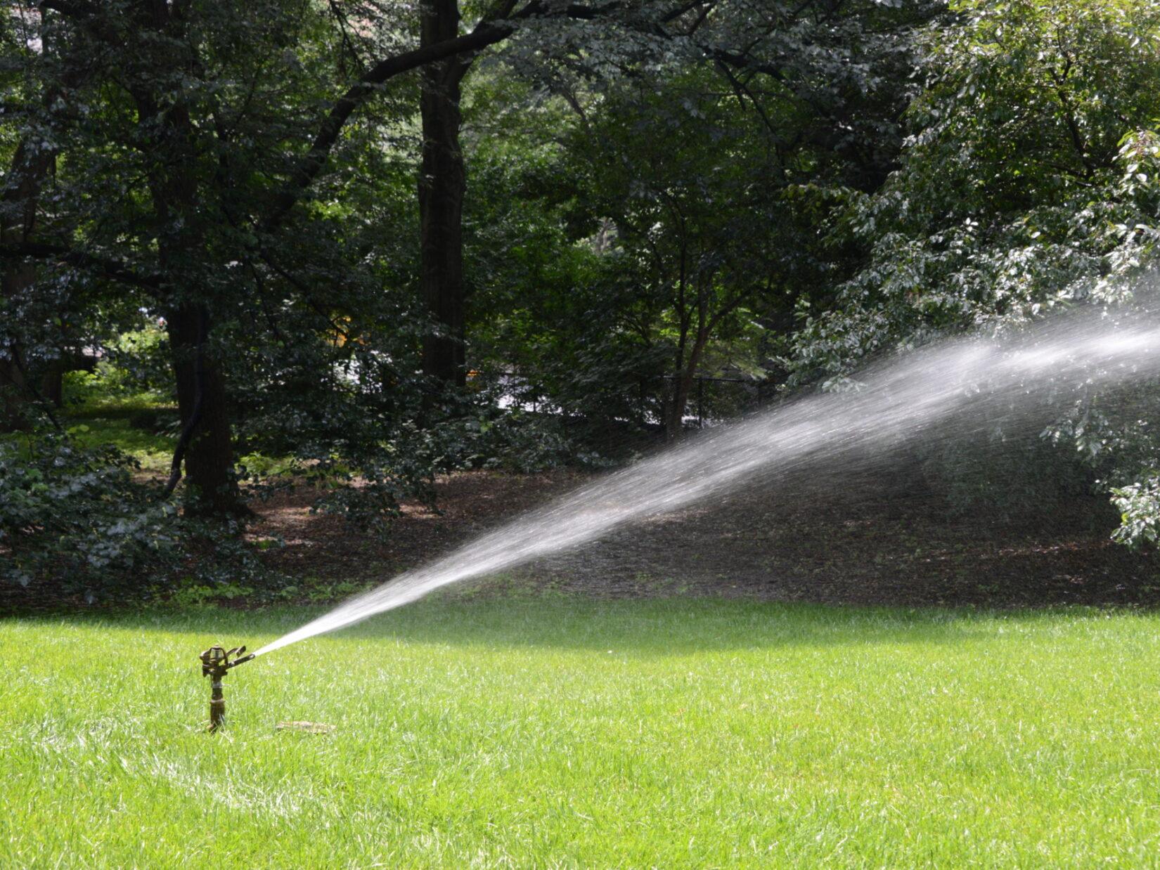 A sprinkler waters a lawn
