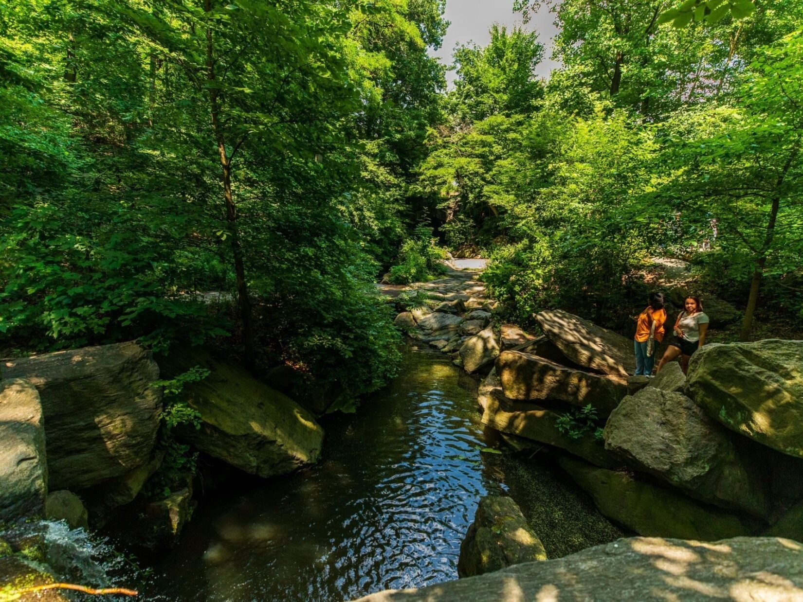 A pair of visitors stand on the shaded banks of the Ravine in a lush forest landscape.